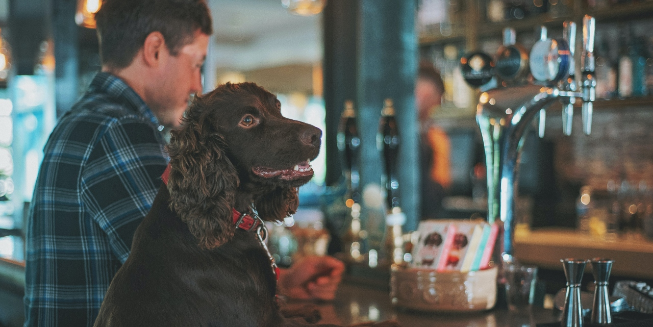dog and owner sitting in a pub